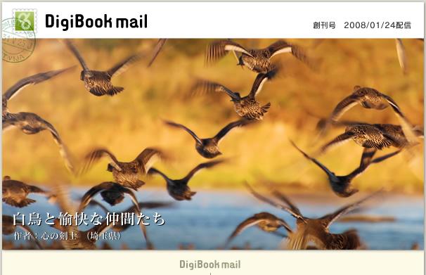 今週の一冊!「心の剣士」様作、「白鳥と愉快な仲間たち」!!